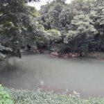 Nance River